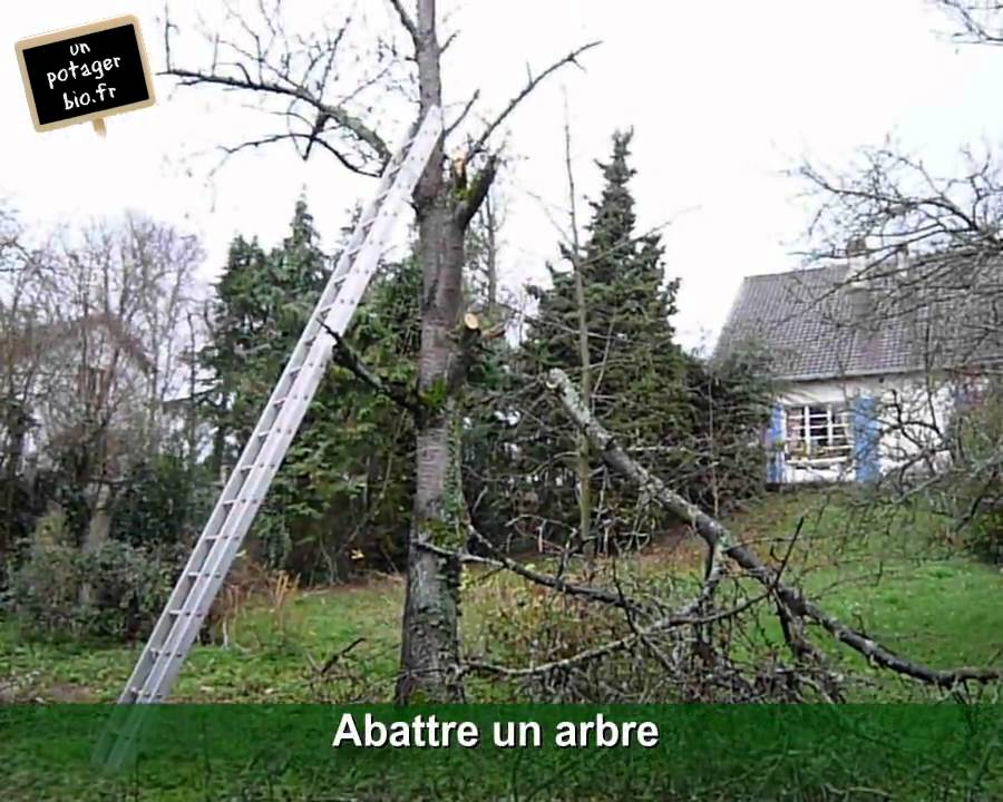abattre un arbre sur le terrain potager youtube. Black Bedroom Furniture Sets. Home Design Ideas