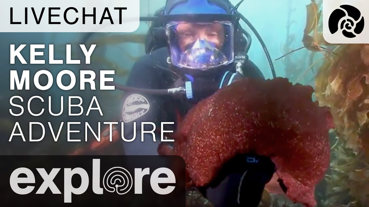 Kelly Moore Scuba Adventure in the Ocean Off Anacapa - Underwater Live Chat