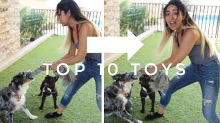Our TOP 10 INDESTRUCTIBLE DOG TOYS! | made ESPECIALLY for Australian Shepherds