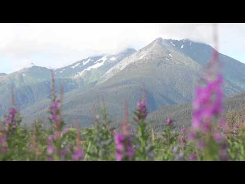 Summer in Southeast Alaska
