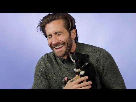 Jake Gyllenhaal Plays With Puppies While Answering Fan Questions