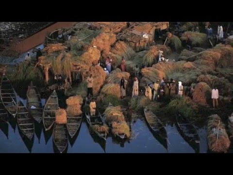 Countries and Cultures : Mali