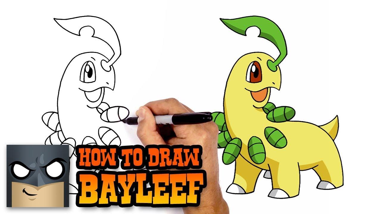 how to draw bayleef pokemon youtube