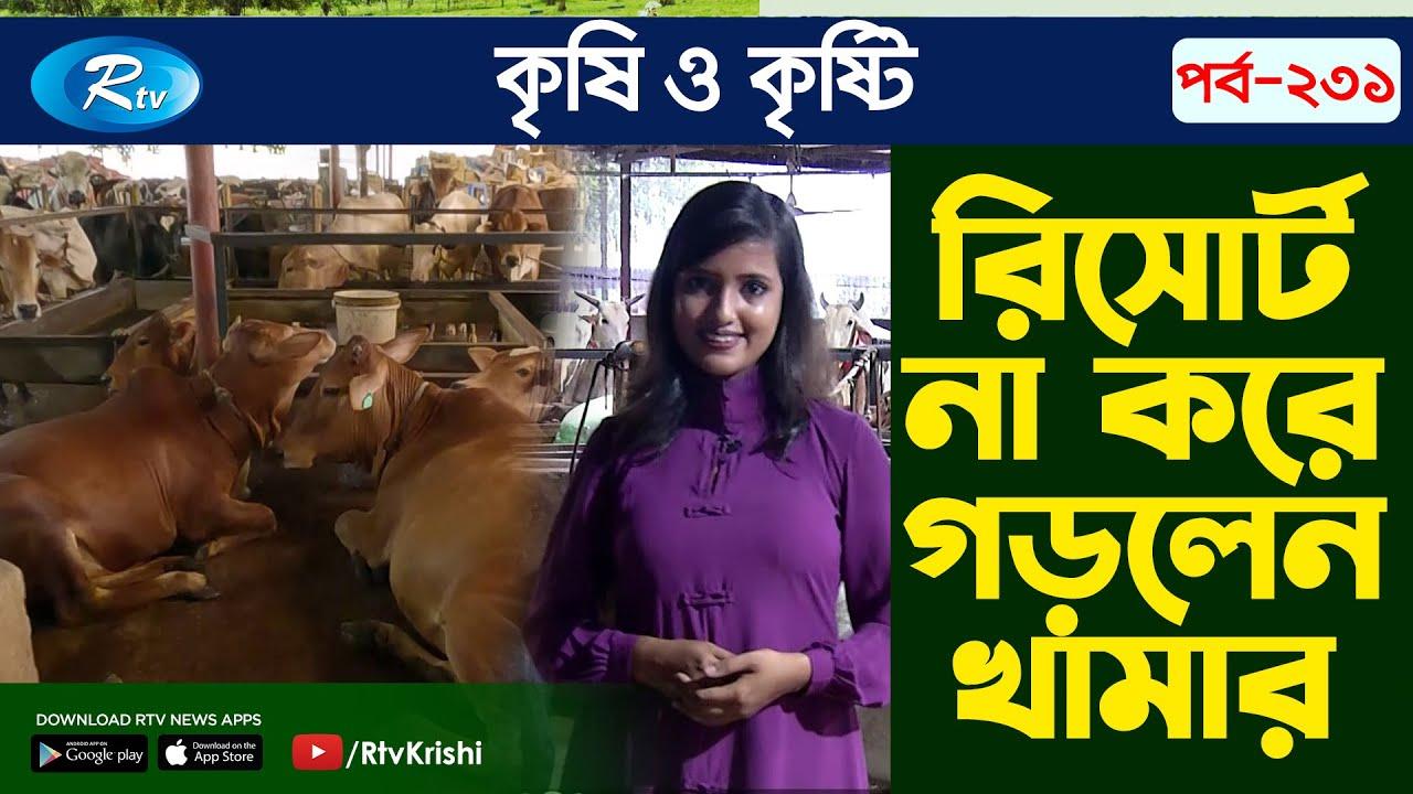Download একটি ব্যতিক্রমি গরু মোটাতাজাকরণ খামার   Krishi o Krishti   Episode 231   Rtv Krishi