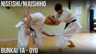 Niseishi/Nijushiho Bunkai - 1a Oyo (Otoshi uke, hikite)