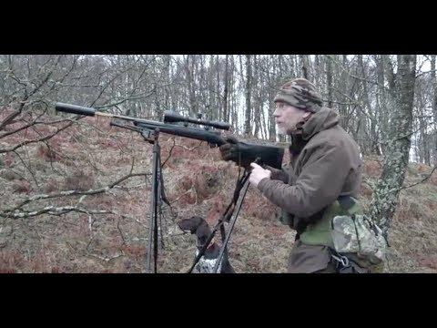 The Shooting Show - gralloching and deer dog training with Chris Dalton