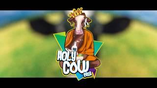 DJ Kalle Ft. Hanna - Holy Cow 2016