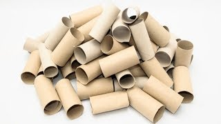 Stop Throwing Away Empty Toilet Rolls, 6 ways To Reuse them Again