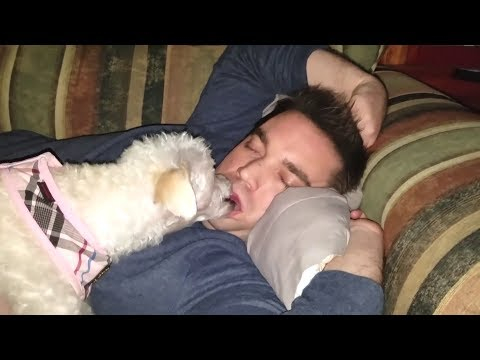 PETS MISSION: Try to WAKE UP YOUR OWNER