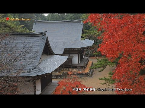 京都 神護寺の紅葉 Jingoji Temple