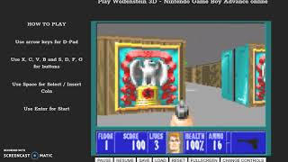 Wolfenstein 3D Arcade Game Emulator