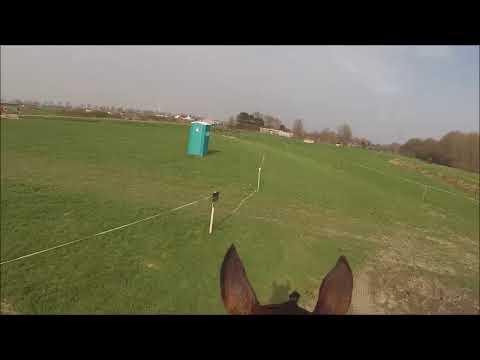 SGW Oud Karspel / North Holland Horse Trials Klasse M