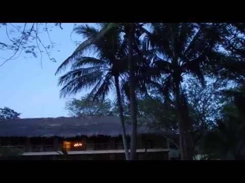 Hotel Lodge At Uxmal - Grillen Gesang Abends am Restaurant - Mexiko, Yucatan Kompakt Rundreise