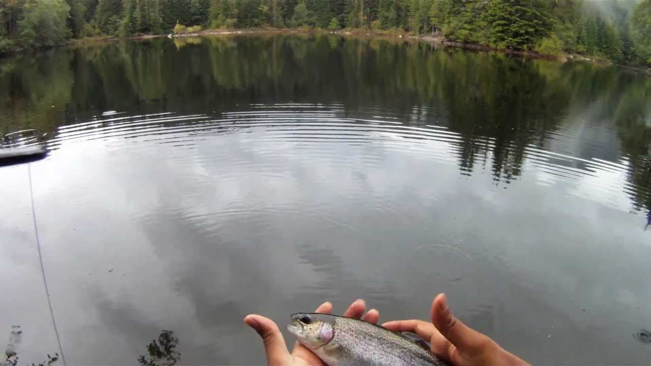 how to fly fishing for trout with spinning gear - youtube, Fly Fishing Bait