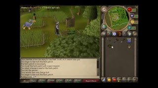 [RS] Runescape Guide: Farming Herb Guide