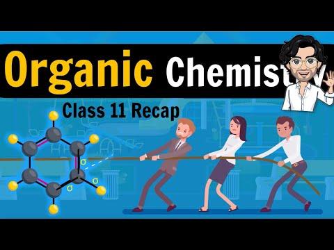 Organic Chemistry - Basics | Class 12 | Inductive Effect | Class 11 Recap | Lecture 1