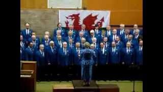 Video Calon Lân - Builth Male Voice Choir St David's Day Concert 2014 download MP3, 3GP, MP4, WEBM, AVI, FLV Agustus 2018