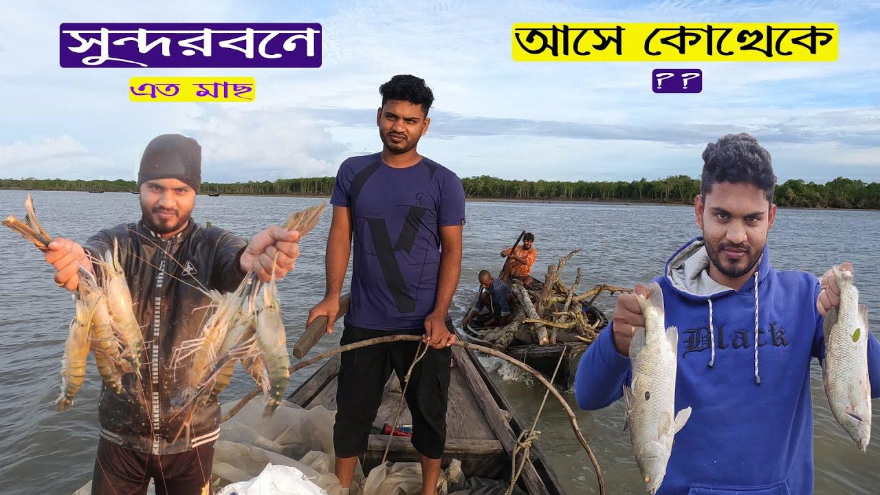 মাছের স্বর্গরাজ্য সুন্দরবন | Amazing Fishing in Sundarban | Fishing Video | Adventure BD