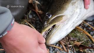 ТАЙМЕНЬ - ЦАРЬ-РЫБА СИБИРСКИХ РЕК! #22 Рыбалка на блесну по принципу ''поймал-отпусти''!