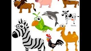 Apprendre l'Italien - Vocabulaire les animaux.