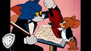 Tom Et Jerry En Français  Place à La Musique  Wb Kids