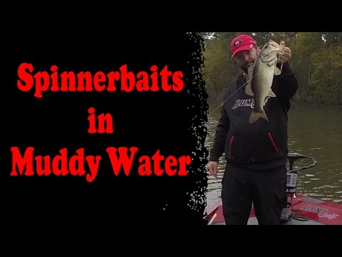 How to Fish a Spinnerbait in Muddy Water