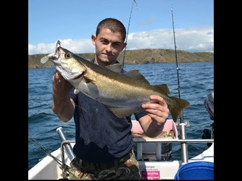 SEA FISHING - Cornwall Species Hunt - RED BAND FISH