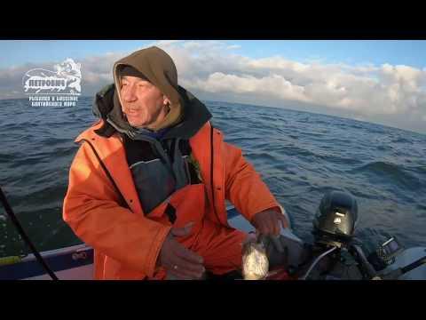 БОЛЬШОЙ УЛОВ VLOG: Ловля трески джигом Балтийское море ЗИМА