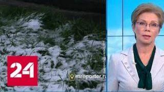 """""""Погода 24"""": в Москве до конца недели ожидаются осадки - Россия 24"""