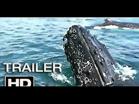 Cage dive official trailer 2017 shark found footage horror movie hd youtube - Open water 3 cage dive ...