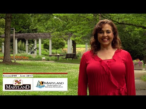 AccessDNR June 2017 - Maryland Department of Natural Resources