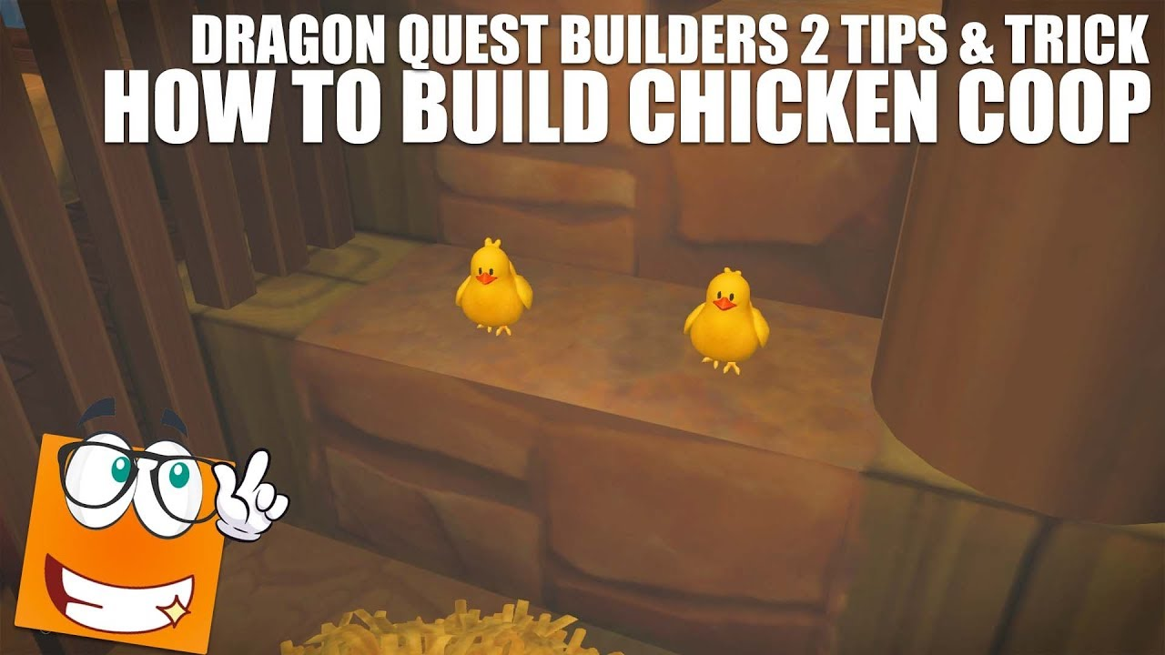 Dragon Quest Builders Coop