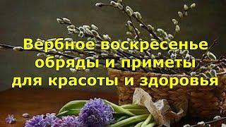 Вербное воскресенье — обряды и приметы для красоты и здоровья.