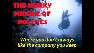 The Murky Middle of Politics