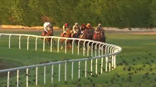 Vidéo de la course PMU PRIX PANACEE