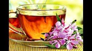 ИВАН-ЧАЙ Поможет Похудеть, Справиться с Запорами | Травяной Чай для Похудения Рецепт