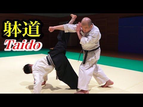 躰道の蹴りは威力あるの?検証してみた【Verification】Power of Taido Kick!