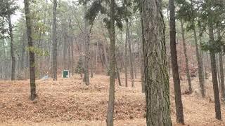 나주숲속의산책펜션 1월1일 설날아침풍경