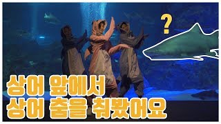 [아기상어댄스] 상어앞에서 상어옷을 입고 상어춤을 춰봤습니다! Baby Shark Song Dance in Coex 키즈댄스놀이