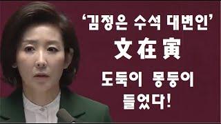 [황태순TV] 김정은 수석대변인 문재인, 도둑이 몽둥이 들다!