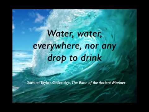 12. Osmoregulation or should you drink salt water?
