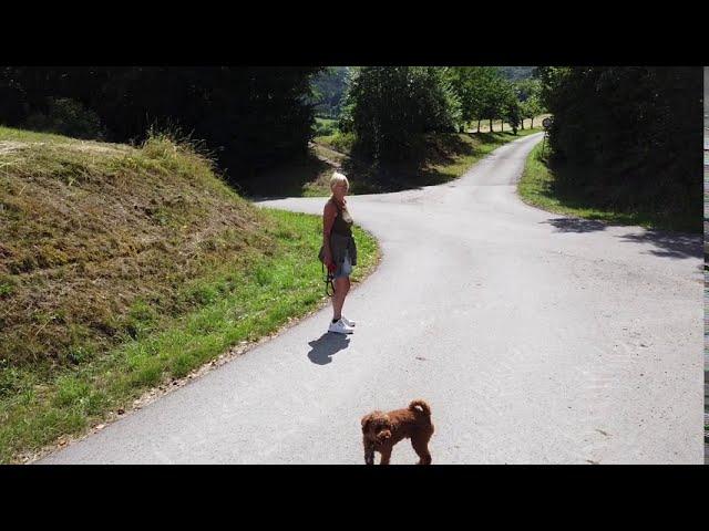(Film nr. 247)  Rhöncamping Bischofsheim in de Rhön