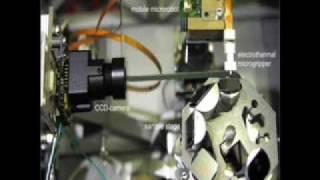 NanoLab: automated nanorobot system