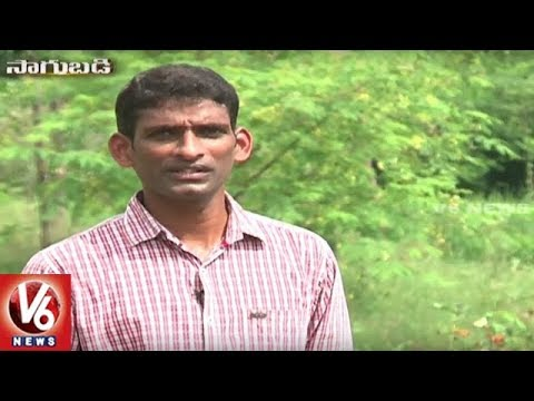 Sagubadi : Success Story Of Organic Farmer Bhaskar | Ranga Reddy District | V6 News