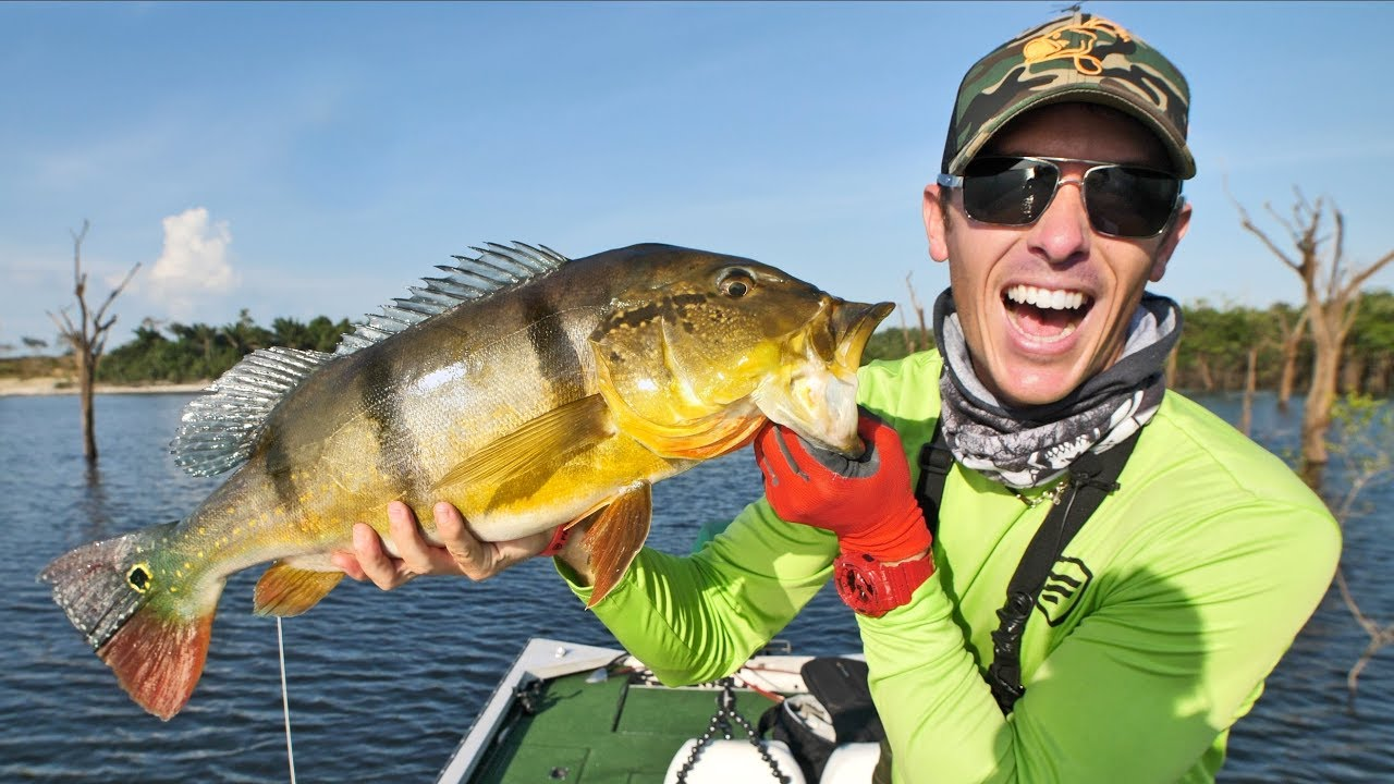 Fishing peacock bass in the amazon pt 1 awesome topwater for Topwater bass fishing