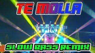 DJ VIRAL 2020!!! TE MOLLA