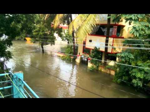 Chennai Floods in Manapakkam