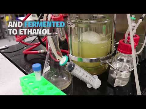 ETHTEC - Sustainable biofuel for the future