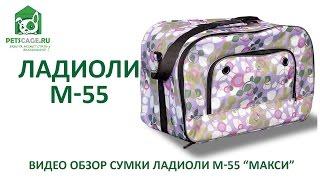 Ладиоли M-55. Видеообзор сумки для собак Ладиоли M-55 МАКСИ.
