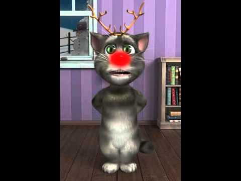 Gomi gato